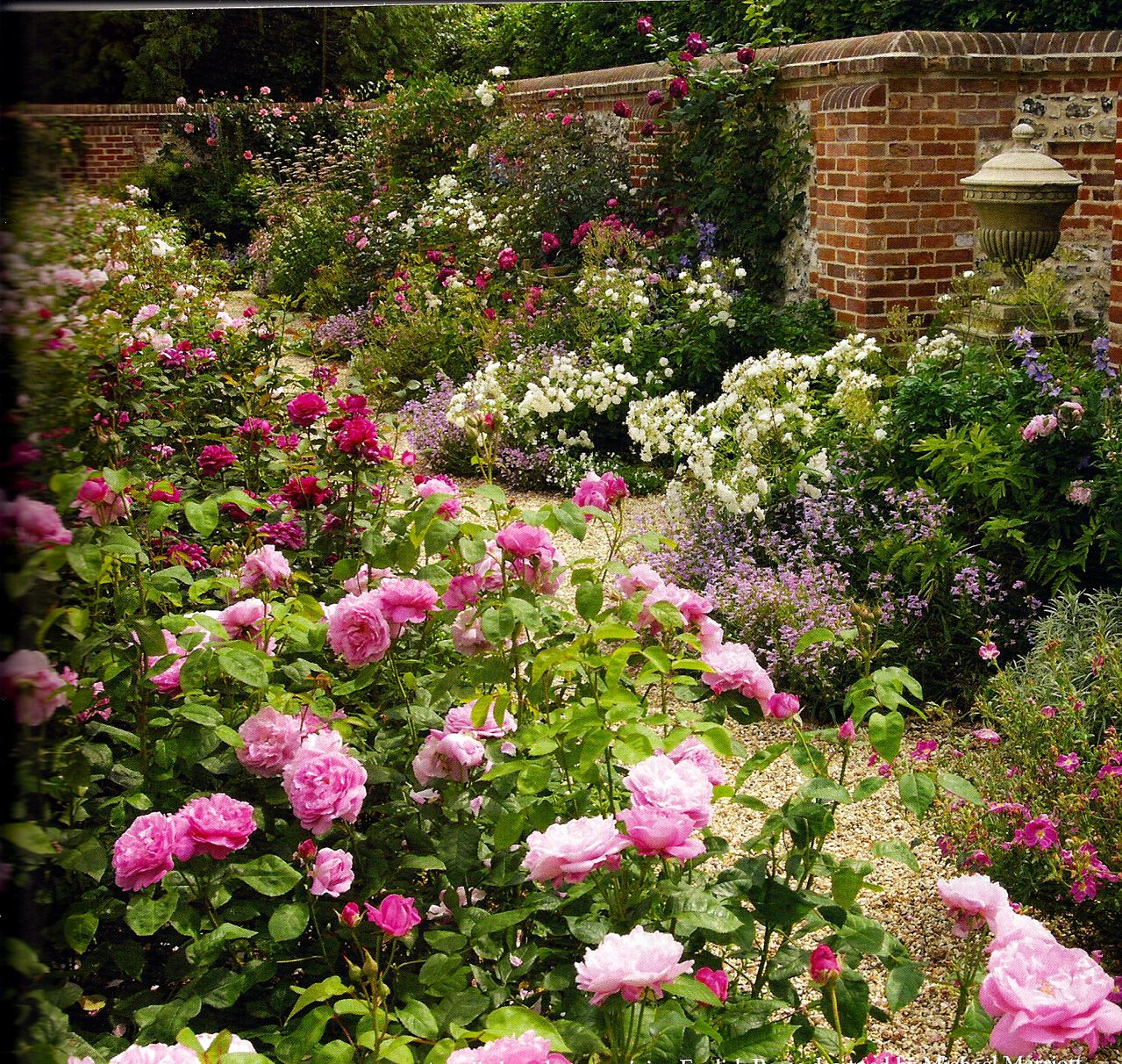 English rose garden designed by michael marriott the for Rose garden design
