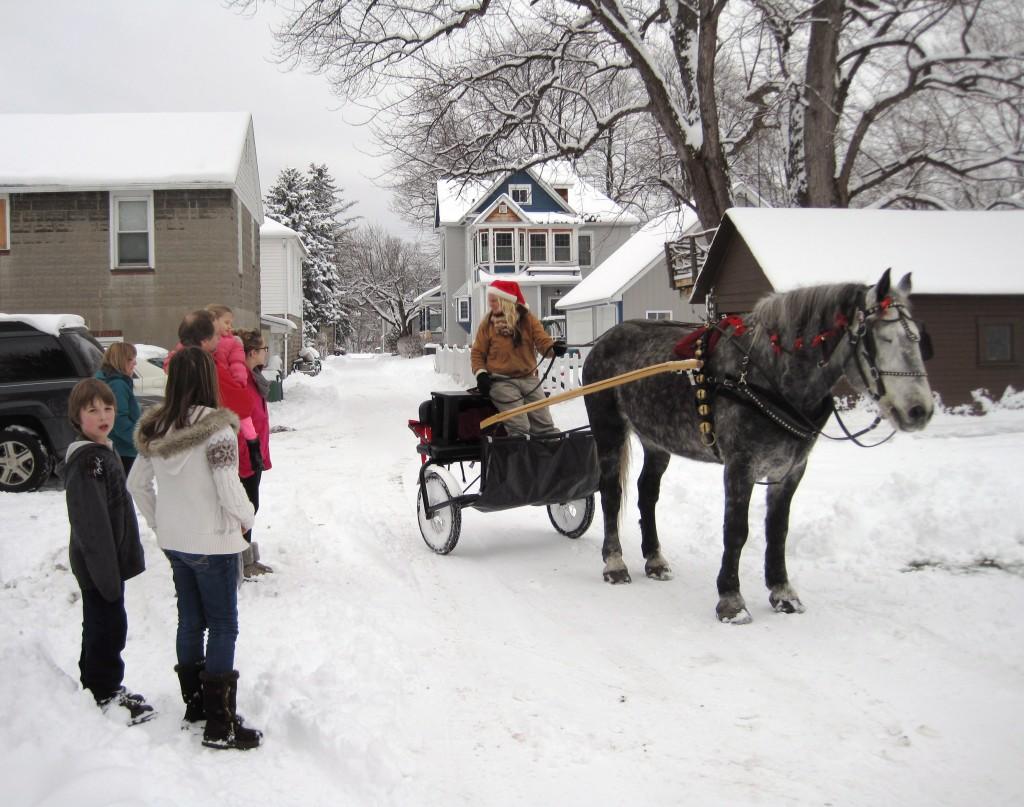One-horse_open_sleigh1
